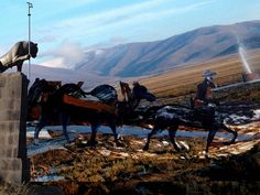 caravan-kurdistan6 by grijsz, via Flickr