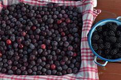 Keď vyskúšate toto, už nikdy nebudete chcieť variť džem | Záhrada.sk Blueberry, Ale, Fruit, Food, Berry, Ale Beer, Essen, Meals, Yemek