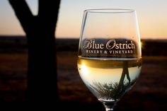 Blue Ostrich Winery & Vineyard in Saint Jo Texas. Come visit us in the Red River Valley. Texas Wineries, Fun Wine Glasses, Wine Auctions, Wine Case, It's Going Down, Wine Delivery, Red River, Wine Storage