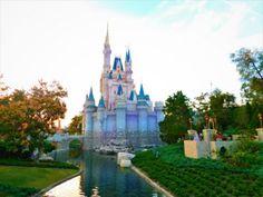 Disney Touring - Update: Disney World Cast Member Killed Was Pinned Under Vehicle