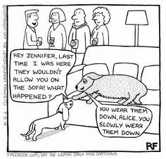 Jennifer's Advice - Off The Leash Dog Cartoons by Rupert Fawcett