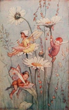 Daisy Fairies - Flower Fairies book by Marion St John Webb, 1925