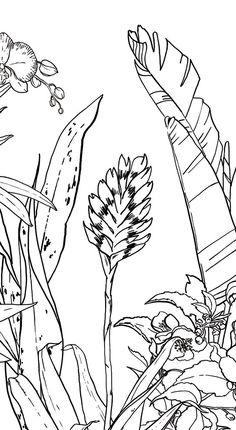 Papier peint Jungle Tropical Noir & Blanc pour Ohmywall créé par le duo d'artistes Caddous & Alvarez dans l'esprit d'une fresque murale. Format Medium. Leurs dessins, imaginés et tracés à quatre mains, font apparaitre un décor mural foisonnant, apaisant, évoquant une nature sauvage pure, l'éden au milieu de la forêt tropicale. 6 couleurs - 4 formats - 24 Possibilités. Tropical Jungle Wallpaper black and white, this tropical forest has the spirit of an eden, you are into the wild nature.