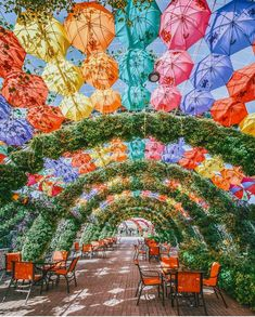 The Dubai Miracle Garden is a site to behold. Seeing the garden in full bloom with its 150 million flowers arranged in colorful arches and patterns is truly magnificent. To experience the Dubai Miracle Garden, contact ToaD at vacations today! Dubai Vacation, Dubai Travel, Hawaii Travel, Unique Gardens, Beautiful Gardens, Voyage Dubai, Places To Travel, Places To Visit, Dubai Miracle Garden