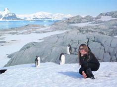 antarctica-penguin-style
