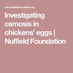 Investigating osmosis in chickens' eggs | Nuffield Foundation