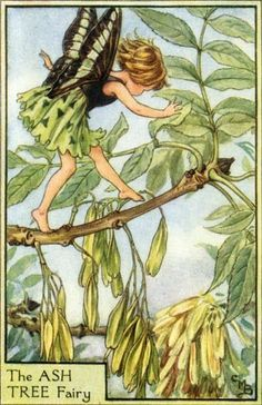 Rosenberry Rooms has everything imaginable for your child's room! Share the news and get $20 Off  your purchase! (*Minimum purchase required.) The Ash Tree Fairy Vintage Wall Art #rosenberryrooms