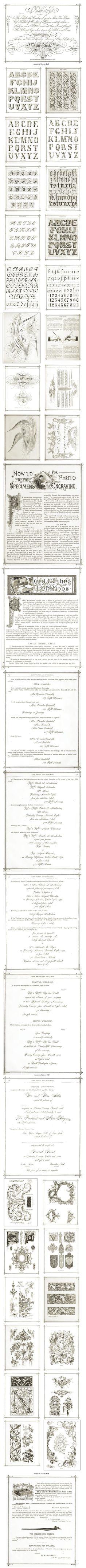 illuminated Handwritten sheets of music | Victorian Era Handwriting Calligraphy Penmanship Alphabet Lettering ...