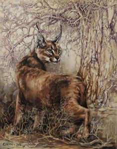 Painting by Cheryl van Dyk. Oil and pen on canvas. Caracal, Wildlife Art, Cheryl, Panther, Van, Canvas, Painting, Animals, Tela