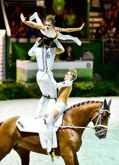 Great exercise, great vaulters! I love Julia's hairstyle WEG 2014 Foto: Daniel Kaiser - impressions
