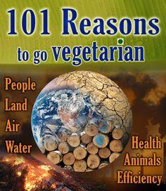 Total Veg - 101 Reasons Vegetarian 410 px