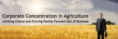 Corporate Concentration in Agriculture Limiting Choice and Forcing Family Farmers Out of Business