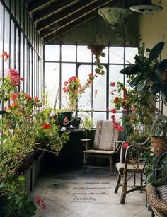 Garden room conservatory 17 conservatories and garden rooms that will make you swoon What Is A Conservatory, Glass Conservatory, Backyard Greenhouse, Pergola Patio, Greenhouse Ideas, Large Greenhouse, Greenhouse Plants, Greenhouse Wedding, Pergola Kits