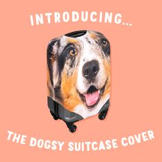 The look of excitement when you spot your suitcase whizzing round the conveyor belt. 😬Our brand new suitcase covers are a statement piece! Conveyor Belt, Suitcase, News, Cover, Movie Posters, Products, Film Poster, Suitcases, Blanket