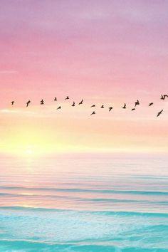 sunrise: gotta love the colors.