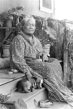 Famous Dogs in History: Hawaiian Poi Dog: A Protector and a Delicacy Honolulu Zoo, Schofield Barracks Hawaii, Kealakekua Bay, Usc Library, Hawaiian Woman, Native Girls, Forest Scenery, Pearl Harbor Attack