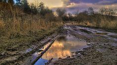 Kaluž Country Roads