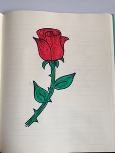 A Rose is a Rose - 8/30/14