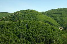Moyenne Montagne - La Montagne Noire au-dessus de Mazamet (Tarn) © CRT Midi-Pyrénées / D. Viet #TourismeMidiPy #MidiPyrenees #France #landscapes #tarn #mazamet