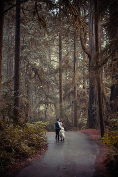 Cecilia and Craig's California Redwood Forest Wedding