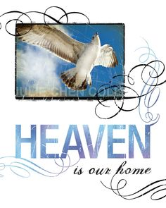 HEAVEN OUR HOME - Google Search