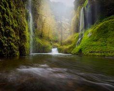 Garden of Eden Copyright Lijah Hanley