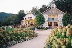 South's Best Wedding Venues: Pippin Hill Farm & Vineyards (North Garden, Virginia)