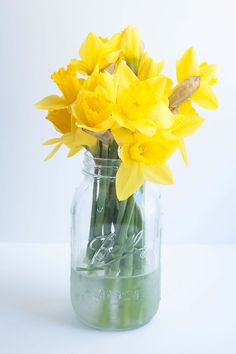 DIY etched mason jar vase - @Mauri Elskamp offers a great workshop on glass etching!