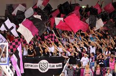 Telekom Bonn Basketball Fans, Bonn Germany! Luv Them!