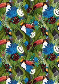 pattern, tropical, bird,