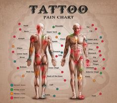Love this >> Tattoo Ache Chart and Calculator