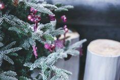 Natal, árvore, neve.