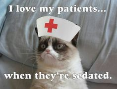I love my patients... when they're sedated.
