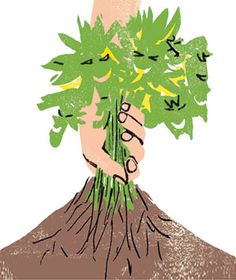 26 Best Roots Images In 2019 Roots Roots Tattoo Tree