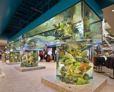 Huge aquarium with pillars and arched walkways