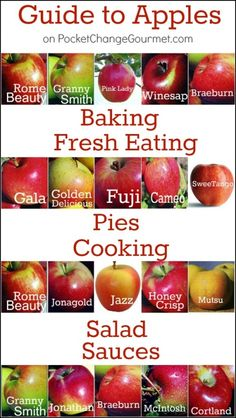 Twenty common apple varieties and the best ways to use them in baking, sauces, salads and pies. We have even done the research to find the best ones for eating.