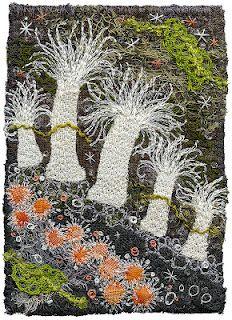 Kirsten Chursinoff. White Anenomes. Sea Anenomes.
