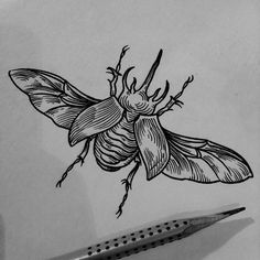 Full Body Tattoo, Body Tattoos, New Tattoos, Sleeve Tattoos, Beetle Tattoo, Bug Tattoo, Tattoo Sketches, Tattoo Drawings, Trippy Designs