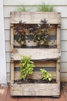 DIY Palette Herb Garden #creative #homedisign #interiordesign #original #modern #trend #vogue #amazing #nice #like #love #follow #finsahome #wonderfull #beautiful #decoration #interiordecoration #strange #cool #decor #new #tendency #funny #happy #brilliant #green #plants #garden #love #impresive #astonishing #stunning #idea #art #pallet