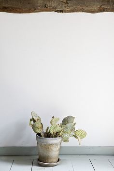 Summer 2 by Nicole Franzen Photography, via Flickr