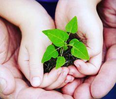Semana Nacional do Meio Ambiente!  Se cada um fizer a sua parte podemos mudar o mundo! Pequenas atitudes podem fazer uma diferença significativa na preservação do nosso meio ambiente! Faça sua parte! Vamos cuidar daquilo que precisamos para sobreviver!  #meioambiente #sustentabilidade #preservaçao #natureza #vida #porummundomelhor  by studyingletras http://ift.tt/25qIp4Y