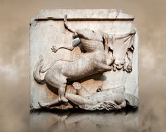 Sculpture of Lapiths and Centaurs battling from the Metope of the Parthenon on the Acropolis of Athens no XXVIII. Also known as the Elgin marbles. Ancient Art, Ancient History, Art History, Roman Sculpture, Horse Sculpture, Parthenon Frieze, Elgin Marbles, Classical Art, Classical Greece