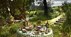 You don't have to look far to find a dreamy picnic spot in the Cape. Here's our picks of the best gourmet picnics in the Cape. Picnic Spot, Summer Picnic, Garden Spells, Wine Safari, Cape Town South Africa, Garden Trees, The Great Outdoors, Places To See, Beautiful Places