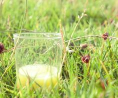 Do you suffer from hay fever? Then you need to try Juice Master Jason Vale's Hay Fever Heaven Juice recipe!