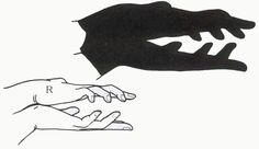 How to make your hands shadows – 12 pictures - Top Trends Easy Yarn Crafts, Cool Paper Crafts, Shadow Puppets With Hands, Hand Shadows, Shadow Theatre, Puppets For Kids, Picture Sharing, Shadow Art, Kids Hands
