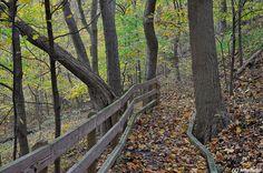 Boyce Mayview Park. Upper St. Clair, Great walking trail, beautiful in every season.