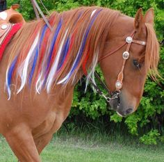 Blue, Red and White Mane Extensions