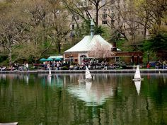 Boat pond in Central Park...what a magical place!