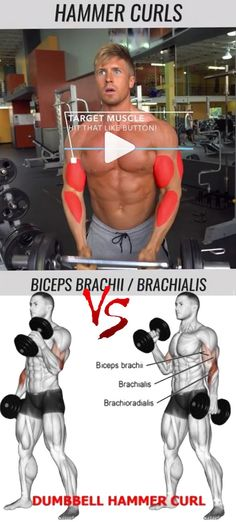 Nothing will help you get big arms faster then training biceps, triceps and forearms. You can build impressive biceps with or without equipment, using either your bodyweight or just dumbbells. The muscle that runs along the underside of your upper arm are the triceps.
