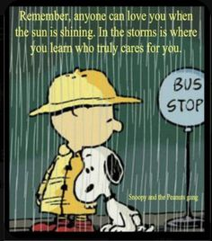 Charlie Brown Quotes, Charlie Brown And Snoopy, Peanuts Quotes, Snoopy Quotes, Snoopy Love, Snoopy And Woodstock, Great Quotes, Funny Quotes, Inspirational Quotes